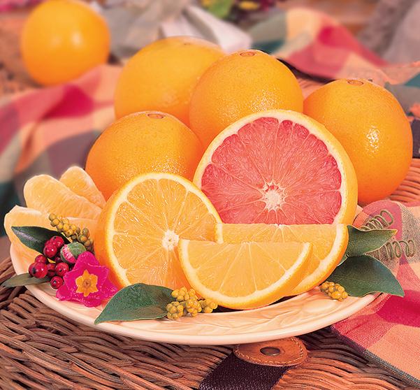 Navels & Grapefruit