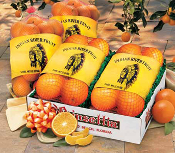 Citrus Gift Packs