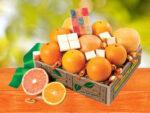 Fruit Fanfare