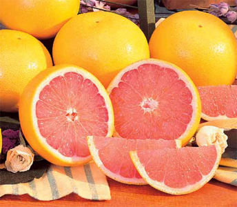 Indian River Ruby Red Grapefruit