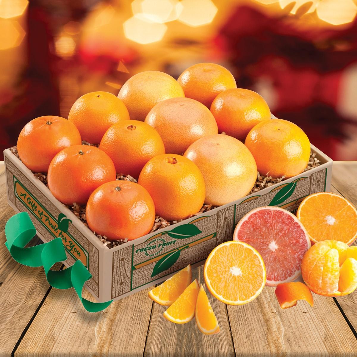 NEW! Fruit Chorus